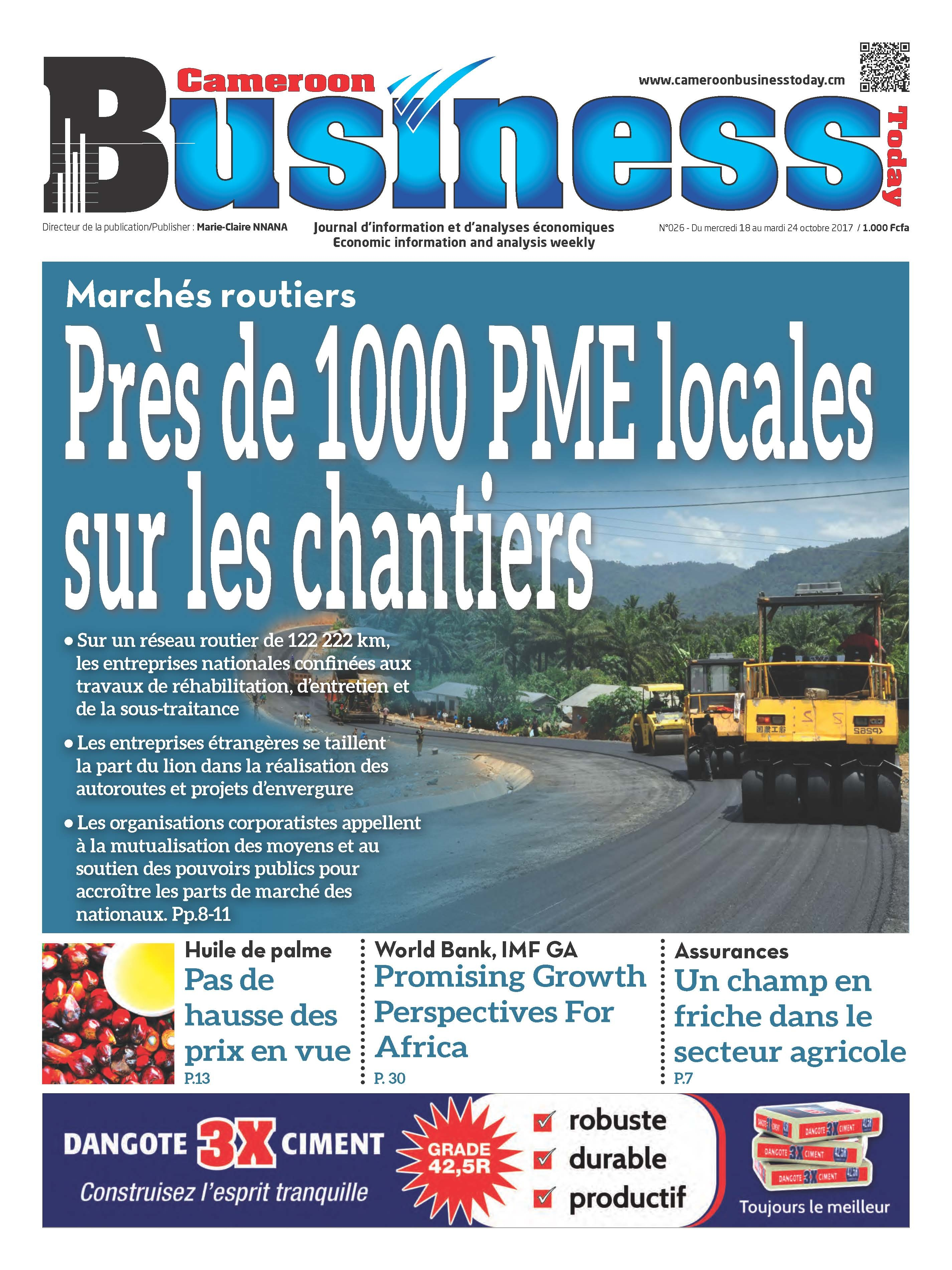 cameroon-business